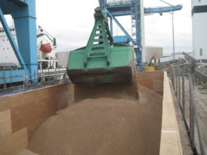 clamshell wood pellets (Large)